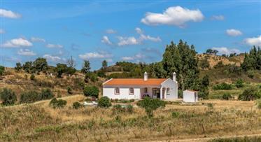 Quinta com cerca de 5 hectares  localizada em zona muito sossegada e com excelentes vista de campo.