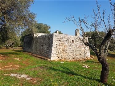 Lamia Con Bella Vista Panoramica In Ostuni Puglia