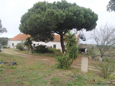 Fantastic Estate 30 minutes from Lisbon. Near the beach