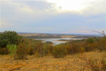 Alentejo - Reguengos de Monsaraz - Estate for sale with 499 ...