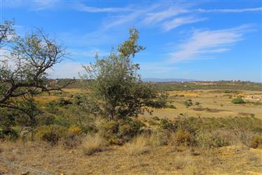 Algarve - Silves - Terreno misto para venda, com 122.000 m2 e com uma ruína, no Algoz