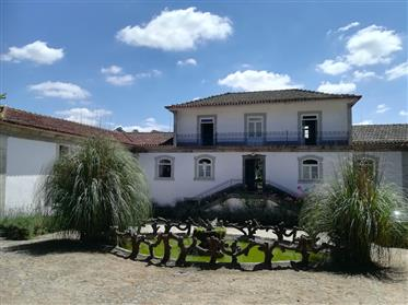 Charming Manor House With Vineyards At Lousada