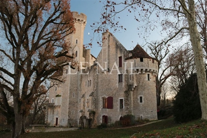 Exceptional castle in the Center of France