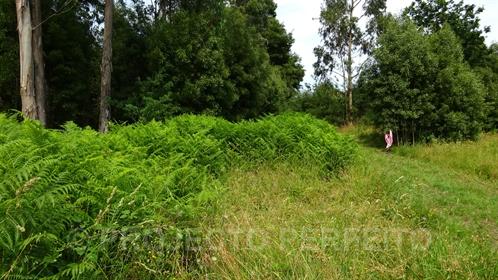 Lote de Terreno Venda em Grijó e Sermonde,Vila Nova de Gaia