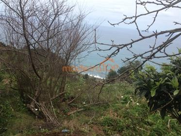 Lote de Terreno Venda em Arco de São Jorge,Santana
