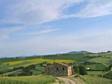Grande proprietà in vendita - Campo d'Archi