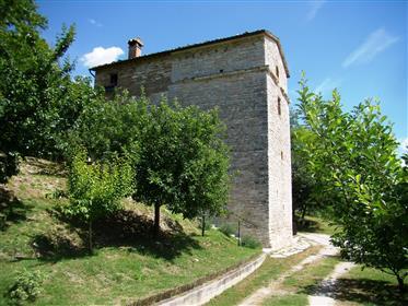 Ancient medieval tower transformed into a villa