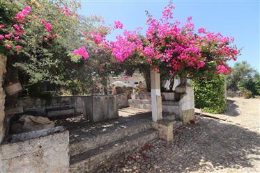 Casa de fazenda remodelada tradicional vários anexos-ruínas ...