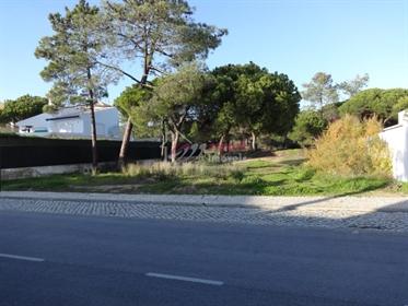 Terreno para Construção, Ancão, Almancil