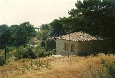 Κατοικία : 65 τ.μ.