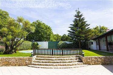Quinta no Outeiro do Louriçal - Pombal