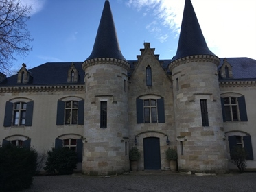 Magnificent castle for sale in the Bordeaux region, with its elegant park and swimming pool, it also
