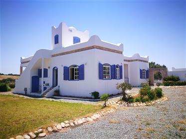 Belle propriété avec maison 264m²
