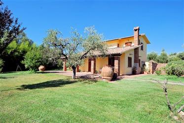 Villa in perfette condizioni con alberi di ulivo
