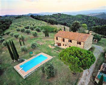 Fattoria di stile toscano con piscina olive e vigneto