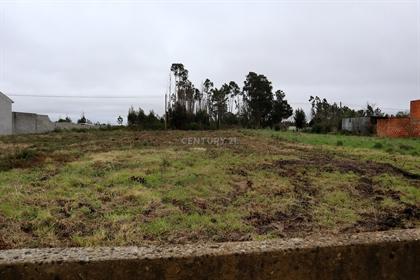 Terreno em Sosa, Vagos (Aveiro)