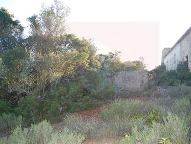 Terreno Misto em Quelfes