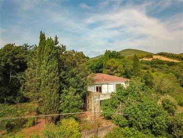 Castelnuovo della Misercordia, a soli 10km dal mare di Casti...