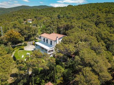 Huis: 300 m²