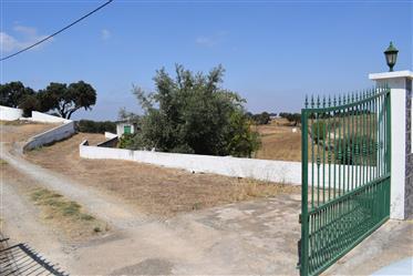 Property for sale in Alentejo Bm060