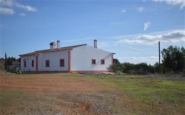 Large 4+1 villa with olive grove