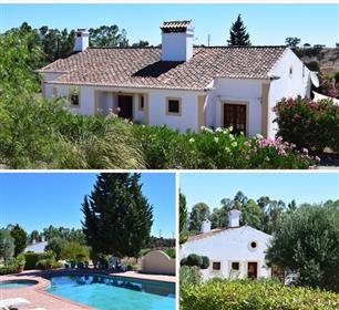 3 Bed Villa + 2 Bed Villa With Swimmimg Pool.