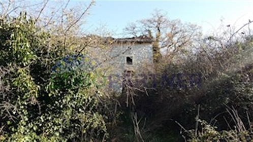 Rarity sur le marché - Istrian Stancija avec trois maisons, vue sur la mer et 76.600m2 de