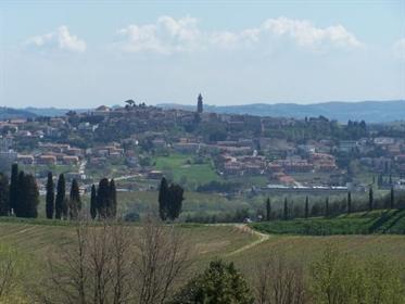 Azienda agricola in vendita a Chianni, in buono stato - Rif....