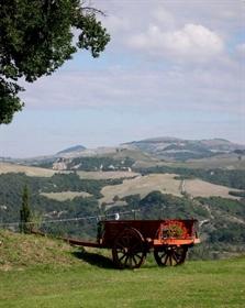 Bauernhof zum Verkauf in Volterra, im ausgezeichneten Zustan...