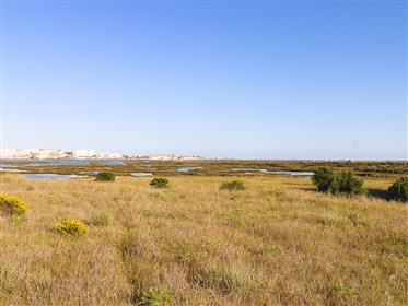 Quinta na Ria Formosa com panorâmica de Faro