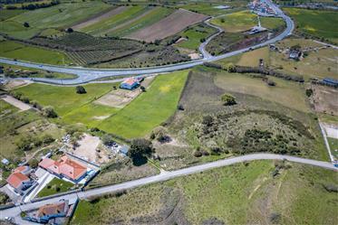 Terreno de 35.000 m2 em Pero Negro / Ervideira