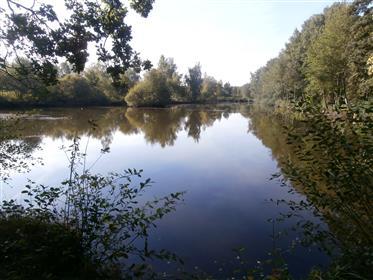 A 2h de Paris sud, En Sologne du Cher, à 10 min. D'Aubigny-Sur-Nère(18 700)  propriété d'environ 7ha