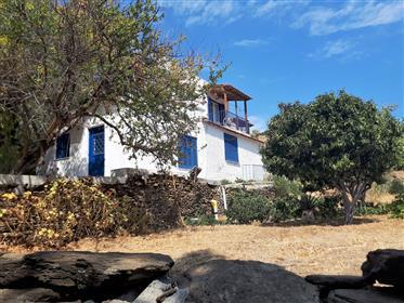 5 ενοικιαζόμενα διαμερίσματα στο Κόρθι