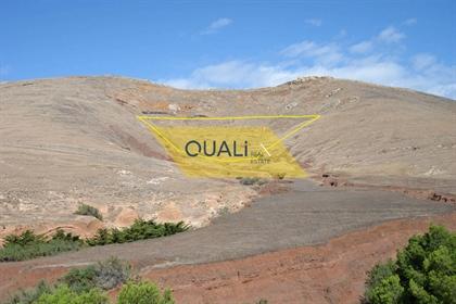 Grundstück: 41.000 m²