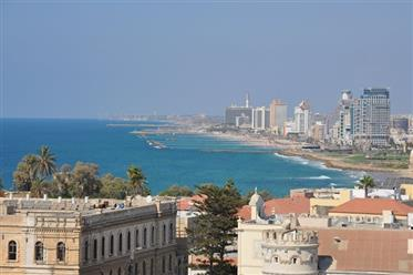 Luxury Mini Penthouse North Yafo