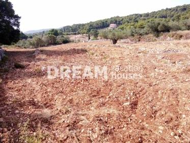 (Προς Πώληση) Αξιοποιήσιμη Γη Οικόπεδο || Ν. Ζακύνθου/Αρτεμίσιο - 5.481 τ.μ, 120.000€