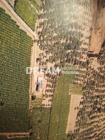(Προς Πώληση) Αξιοποιήσιμη Γη Αγροτεμάχιο || Ν. Ζακύνθου/Αρτεμίσιο - 4.497 τ.μ, 160.000€