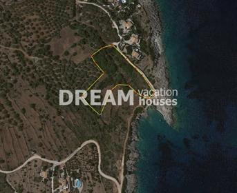 Terrain : 6500 m² : 6500 m²
