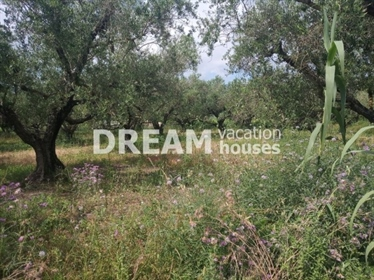 (Προς Πώληση) Αξιοποιήσιμη Γη Οικόπεδο || Ν. Ζακύνθου/Αρτεμίσιο - 3.660 τ.μ, 140.000€