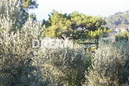 (Προς Πώληση) Αξιοποιήσιμη Γη Οικόπεδο || Ν. Σάμου/Ικαρία-Ράχες - 5.062 τ.μ, 350.000€