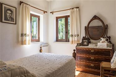 Casa: 236 m²