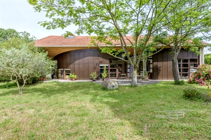 Old barn rehabilitated by an architect