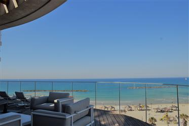 Luxus-Immobilie: 455 m²