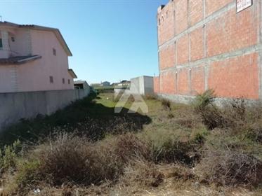 Terreno para Construção - Murtosa