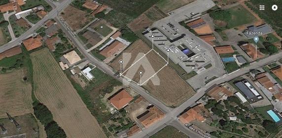 Terreno em Avanca
