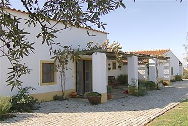 Farm in Rural Tourism, in Moura