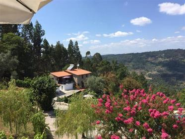 Quinta com 3 casas, piscina, terraços e 4500m2 de terreno, a poucos Km de Oliveira do Hospital