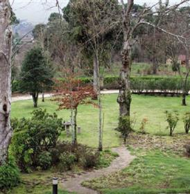 Quinta Composed Of Two Houses And Swimming Pool Tondela