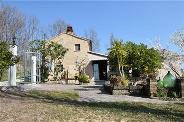 Casale con giardino in vendita a Grottazzolina nelle Marche