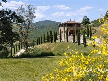 Villa unifamiliare via Trasimeno 23, Passignano sul Trasimeno